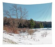 Winter On The Moose River - Old Forge New York Tapestry