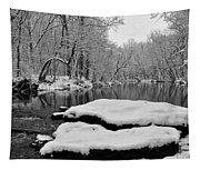 Winter On The Wissahickon Creek Tapestry
