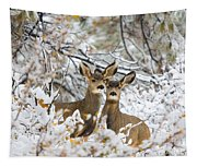 Winter Pair Tapestry