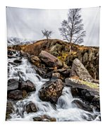 Winter Rapids V2 Tapestry