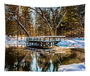 Winter Reflections Tapestry