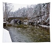 Winter Scene At Valley Green Tapestry