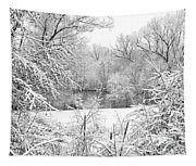 Winter Snow At Huron River Tapestry