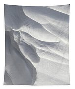 Winter Snow Drift Sculpture  Tapestry