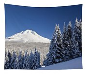 Winter Snow Over The Cascade Range Tapestry