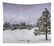 Winter Solitude  Tapestry