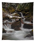 Winter Stream Tranquility Tapestry