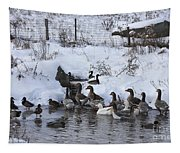 Winter Swimming Hole Tapestry