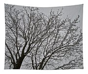Winter Tree 6 Tapestry