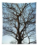 Winter Tree Tapestry