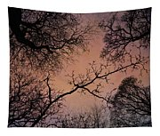 Winter Tree Canopy Tapestry