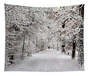 Winter Walk In Fairytale  Tapestry