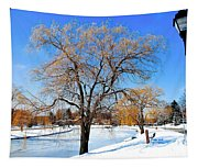 Winter Willow Tapestry