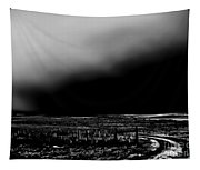 Winter Winds Bw Tapestry
