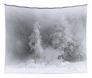 Winter Wonderland Of Yellowstone Tapestry