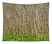 Winter Woods Tapestry