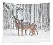 Winters Love Tapestry