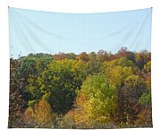 Wisconsin Colors Tapestry