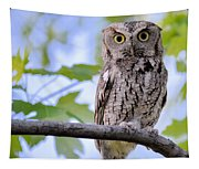 Wise Old Owl Tapestry