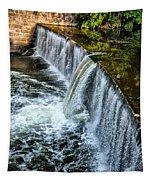 Wissahickon Dam At Ridge Avenue - Side View Tapestry