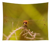 With Landing Gear Down  Tapestry