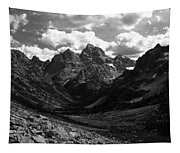 Within The North Fork Of Cascade Canyon Tapestry