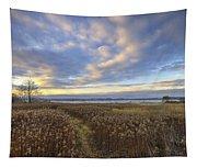 Wonderful Sunset Tapestry