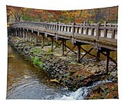 Wood Bridge And Autumn Color Tapestry