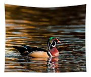 Wood Duck At Morning Tapestry