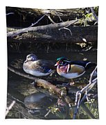 Wood Duck Reflections Tapestry