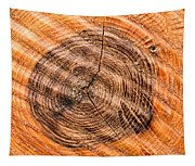 Wood Surface With Annual Rings Tapestry