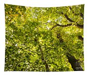 Woodland Background 02 Tapestry