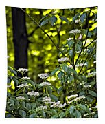 Woods Faeries Tapestry