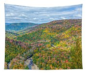 Worlds End State Park Lookout Tapestry