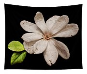 Wounded White Magnolia Wide Version Tapestry