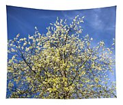 Yellow And Blue - Blooming Tree In Spring Tapestry