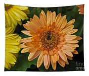 Yellow And Peach Daisy Tapestry