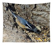 Yellow Bellied Nuthatch Tapestry