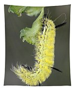 Yellow Caterpillar 1 Tapestry
