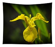 Yellow Flag Flower Outdoors Tapestry