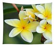 Yellow Frangipani Flowers Tapestry