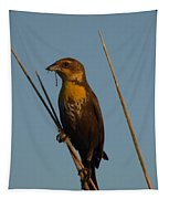 Yellow-headed Blackbird With Dragonfly Tapestry