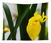 Yellow Iris Tapestry