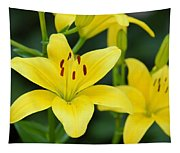 Yellow Lilly 8107 Tapestry
