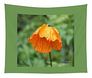 Yellow Poppy - Morning Dew Tapestry