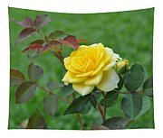 Yellow Roses Tapestry