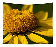 Yellow Saucer Tapestry