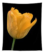 Yellow Tulip Open On Black Tapestry