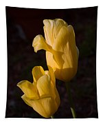 Yellow Tulips Last Rays Tapestry