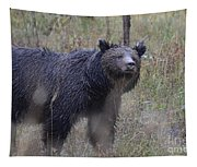 Yellowstone Grizzly Tapestry